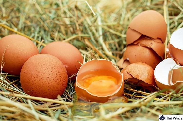 eggs are good for hair growth
